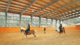 Indoor-Riding-Arena-Dust-Control